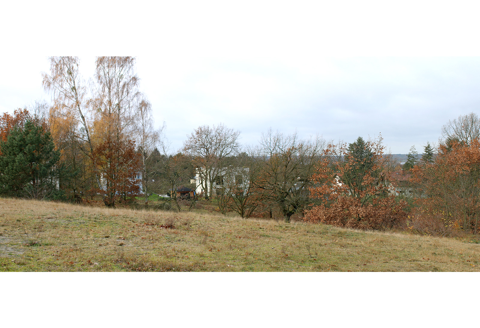 Caputh Position 3 Am Krähenberg